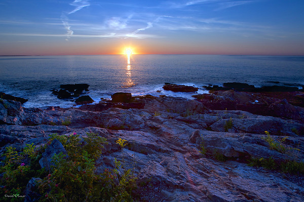 Maine Coast Sunrise