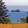 Flye Island Portrait. Flye Is. is located in the Blue Hill Bay near Naskeag, Maine