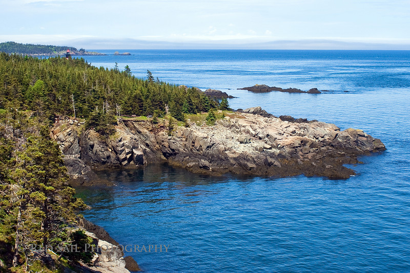 Quoddy North Coast