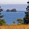Flye Island Landscape. Located in Blue Hill Bay at Naskeag, Maine.