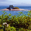 Naskeag Point Rock in Blue Hill Bay. This is located on the Blue Hill Peninsula off Flye Point Road near Brooklin, Maine. The Lookout Inn is here and is worth a visit.