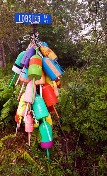 Lobster trap buoys.