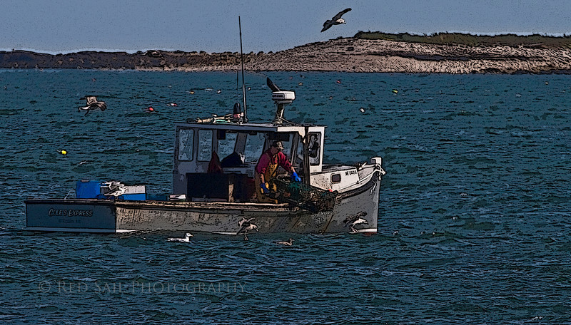 Lobster boat, Cole's Express, works in Pigeon Hill Bay. Bois Bubert Island in the background. Down East Maine.