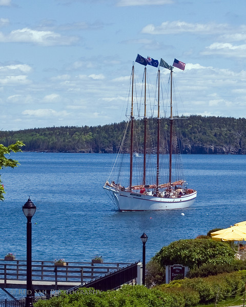 Schooner, Margaret Todd approaching Bar Harbor, Maine. Bar Harbor is located on Frenchman Bay,  Mt. Desert Island. An array of shops and restaurants with close-by Acadia National Park makes this a great town for tourist to visit.