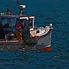 Fisherman aboard the lobster boat, Cole's Express, checking his trap.