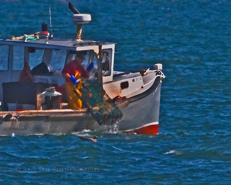 Lobster boat working in Pigeon Hill Bay. This image was taken from the shore at Petit Manan Point.