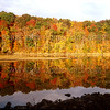 NEW RIVER IN FALL FOLIAGE 001
