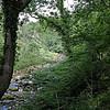 Ingleton Waterfall Trail