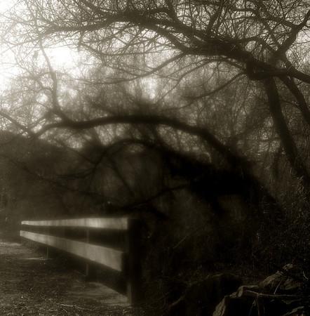 Malibu Creek-14