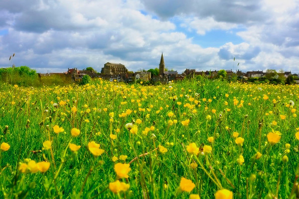 Malmesbury in May