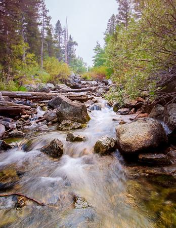 Rock Canyon stream