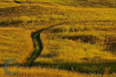 Trails, Camden State Park
