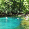 Manatee Springs Head Pool