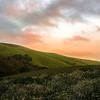 sunset at Pt Reyes Station