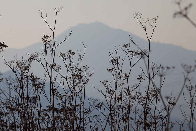 Mt.TamSmoke0850