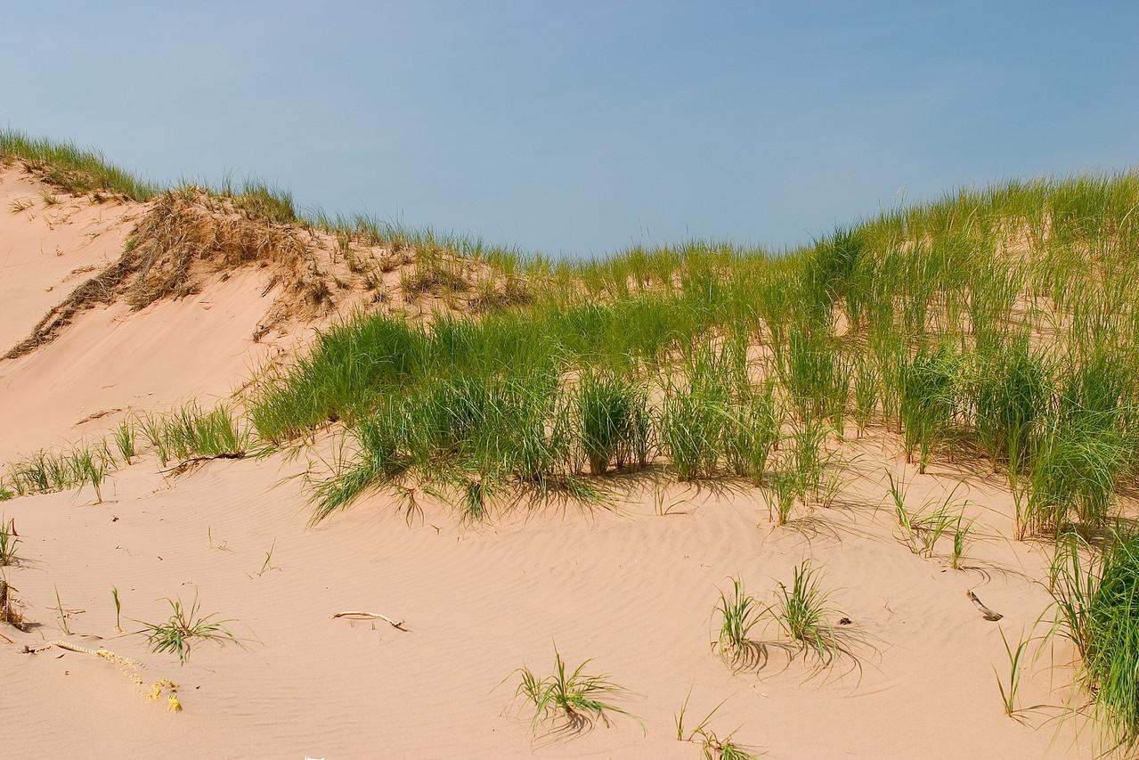 Sand Dunes, Prince Edward Island