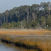 Winter Marsh Scene in the Low Country of Glynn County Georgia