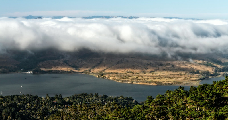 Tomales Fog