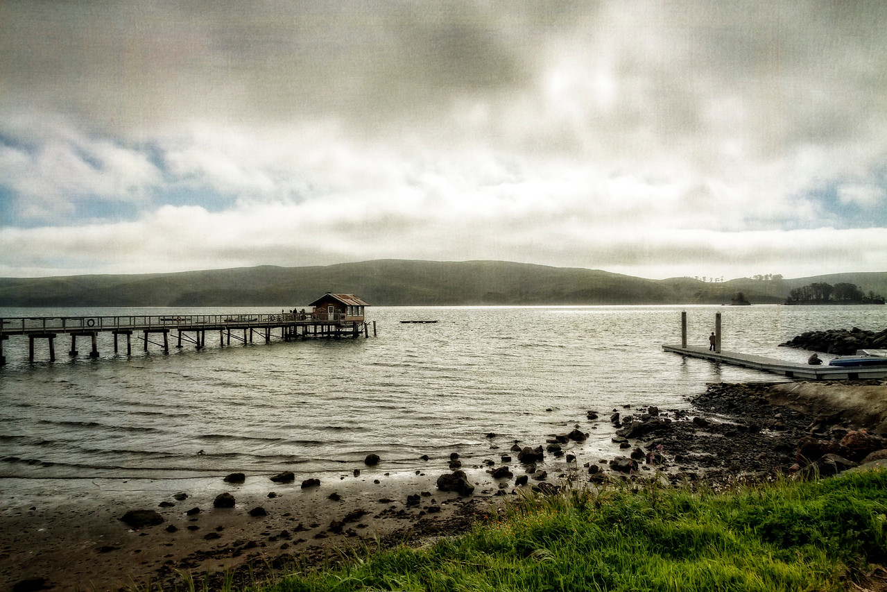 Saturday Afternoon, Tomales Bay