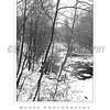 Ellicott City - Pataspco State Park - Black & White 4