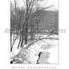 Ellicott City - Pataspco State Park - Black & White 3