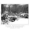 Ellicott City - Pataspco State Park - Black & White 9