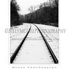 Ellicott City - Pataspco State Park - Black & White 7