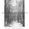 Ellicott City - Pataspco State Park - Black & White 6