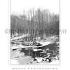 Ellicott City - Pataspco State Park - Black & White 2