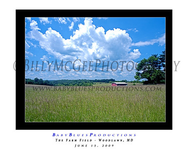 Field and Stream - 15 Jun 2009
