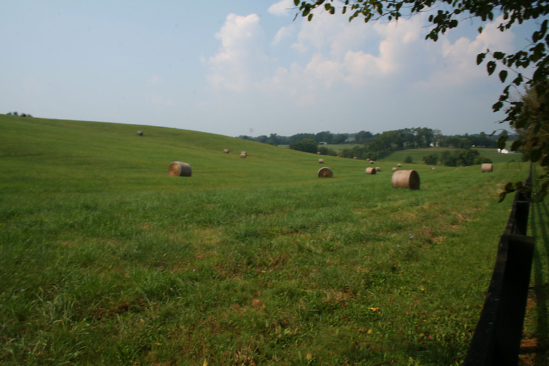 A Country Scene - Baltimore County