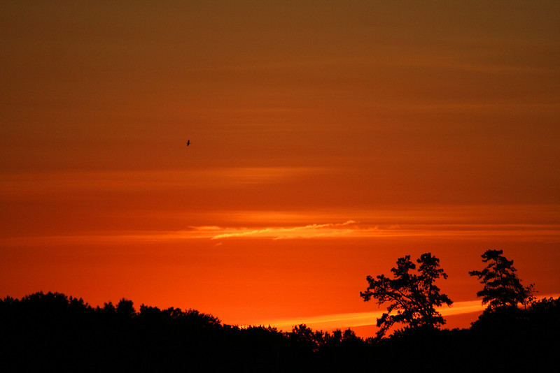 Sandy Point State Park Sunset