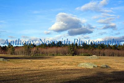 Landscape - Bellingham