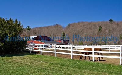 Equestrian Stables - Lenox