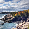 Fall Foliage on Rocky Coast - Acadia NP - Maine<br /> iPhone photo