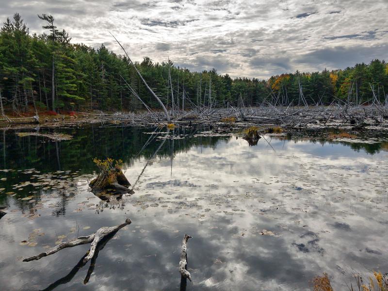 Beaver Made Pond - Acadia NP - Maine<br /> iPhone photo
