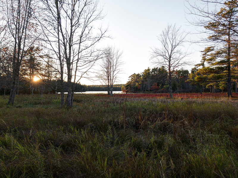 Somesville Field at Sunset - Near Acadia NP - Maine<br /> iPhone photo