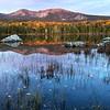 First light - Sandy Stream Pond - Baxter State Park - Maine<br /> iPhone photo