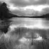 Lewey Lake In Late Fall - Adirondacks, NY