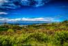 Maui, Hawaii   Shot from Road to Kula Hwy 37