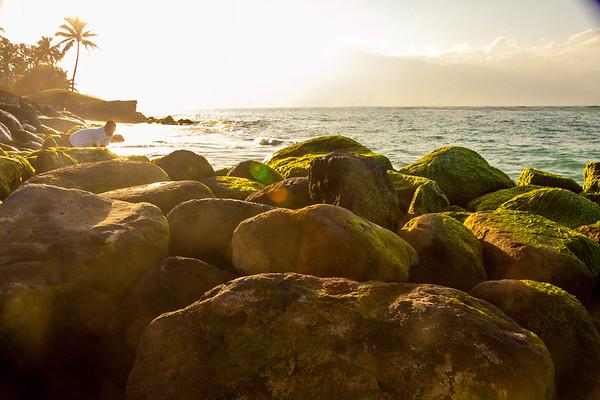 Maui Scapes