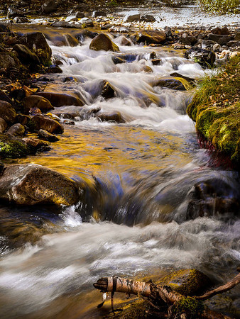 McGee Creek Color