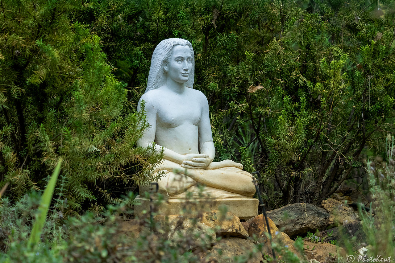 Babaji Meditating at Meditation Retreat