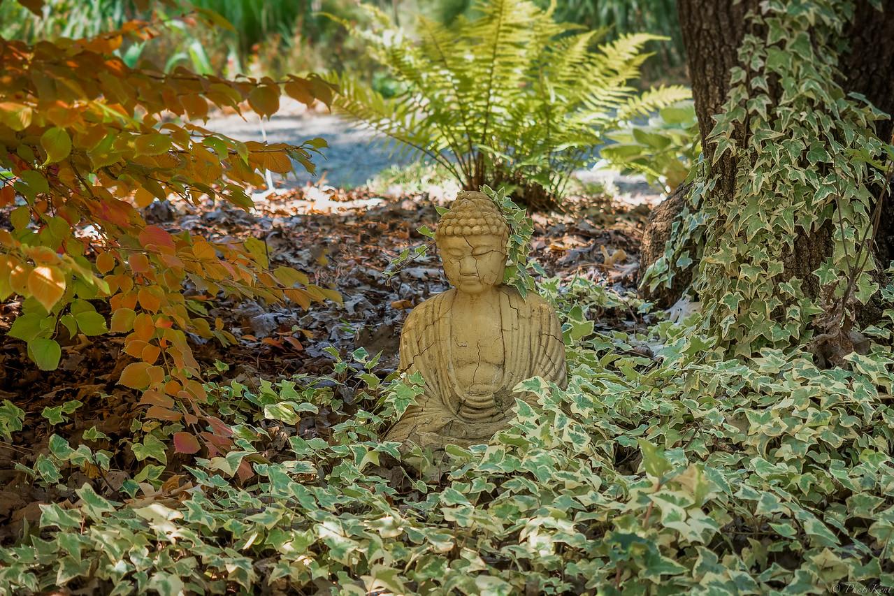 Buddha in Quiet Meditation