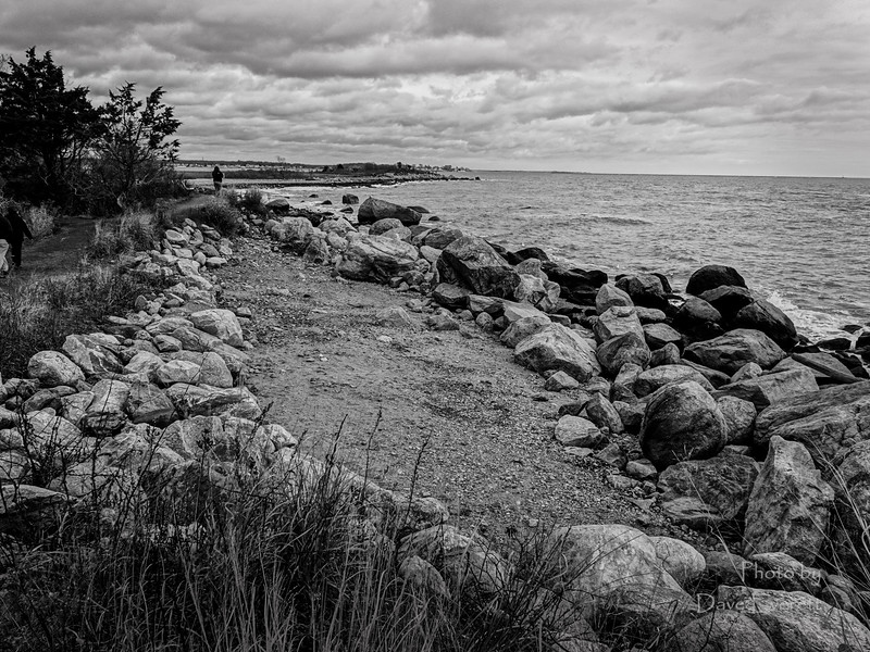 River and Beach Scapes January 19th 2015-12