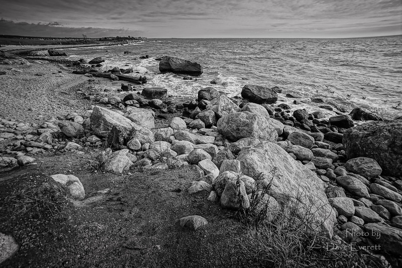 River and Beach Scapes January 19th 2015-14