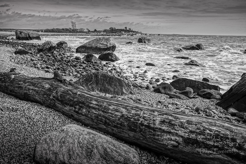 River and Beach Scapes January 19th 2015-20