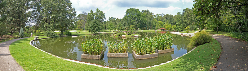 Coy Pond - Panoramic View