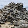 Disturbing rocks
