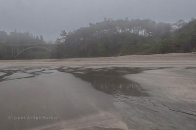 Jug Handle State Natural Reserve